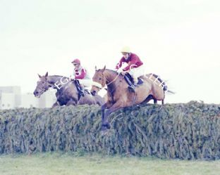 Red Rum with Tommy Stack (709-07)